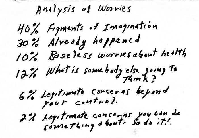Analysis of worries for Wisdom Wednesday from Susan Mosey of Ancestry Binders