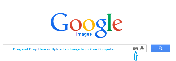 upload an image to google search