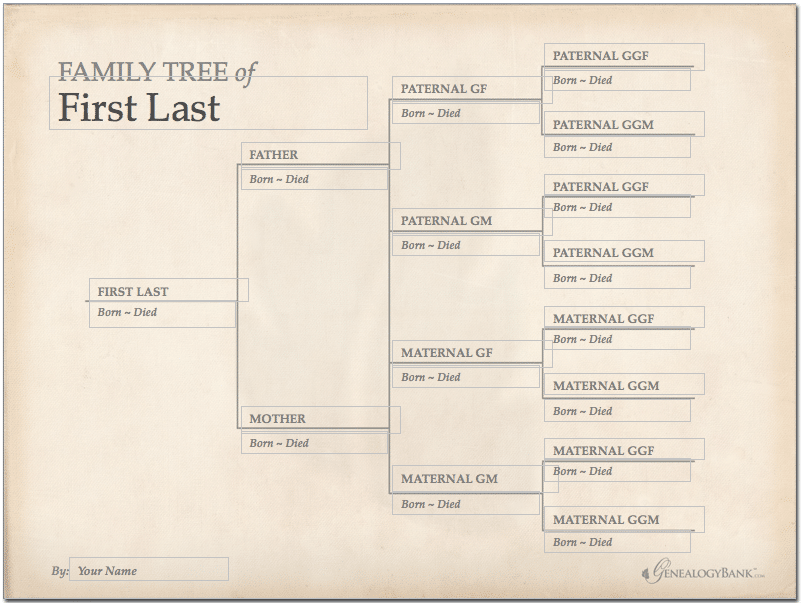 Family Tree Template Finder: Free Charts for Genealogy