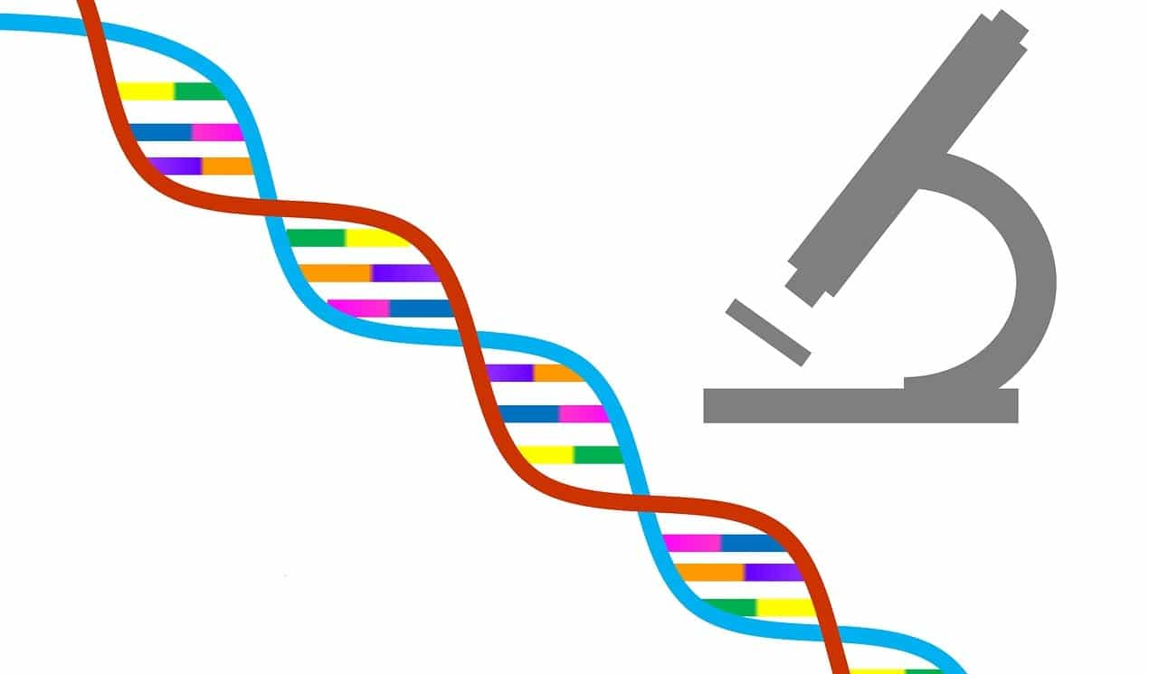 myheritage wants you to upload your dna for free family history daily