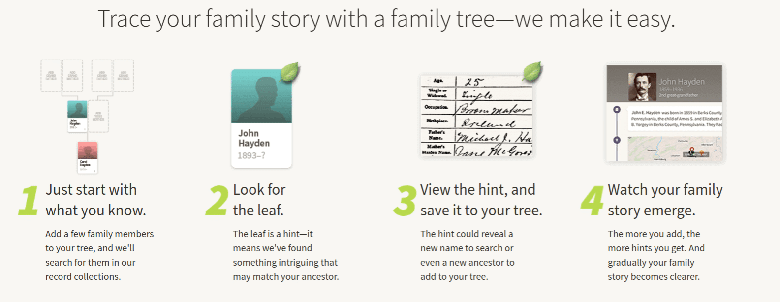 Ancestry Family Tree - 6 Best Family Tree Software Programs