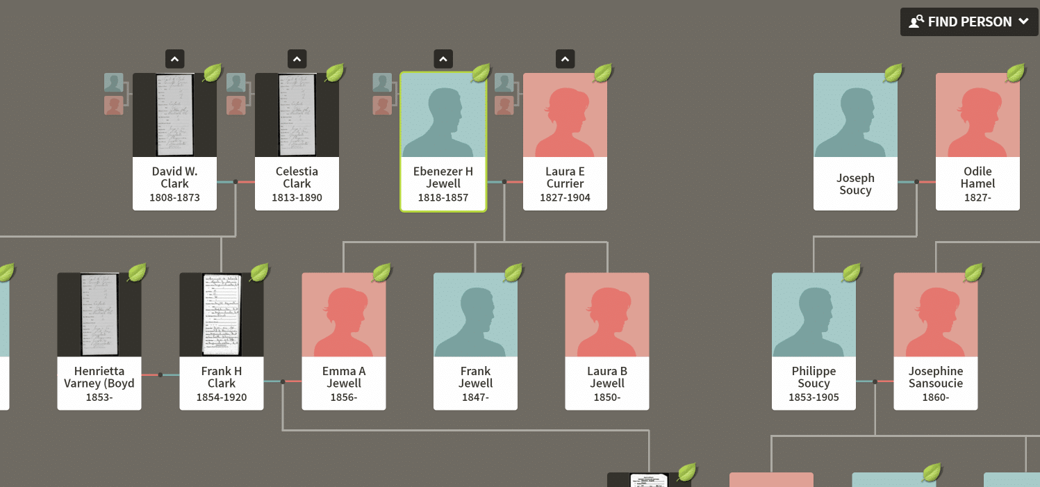 Ancestry Tree Family View