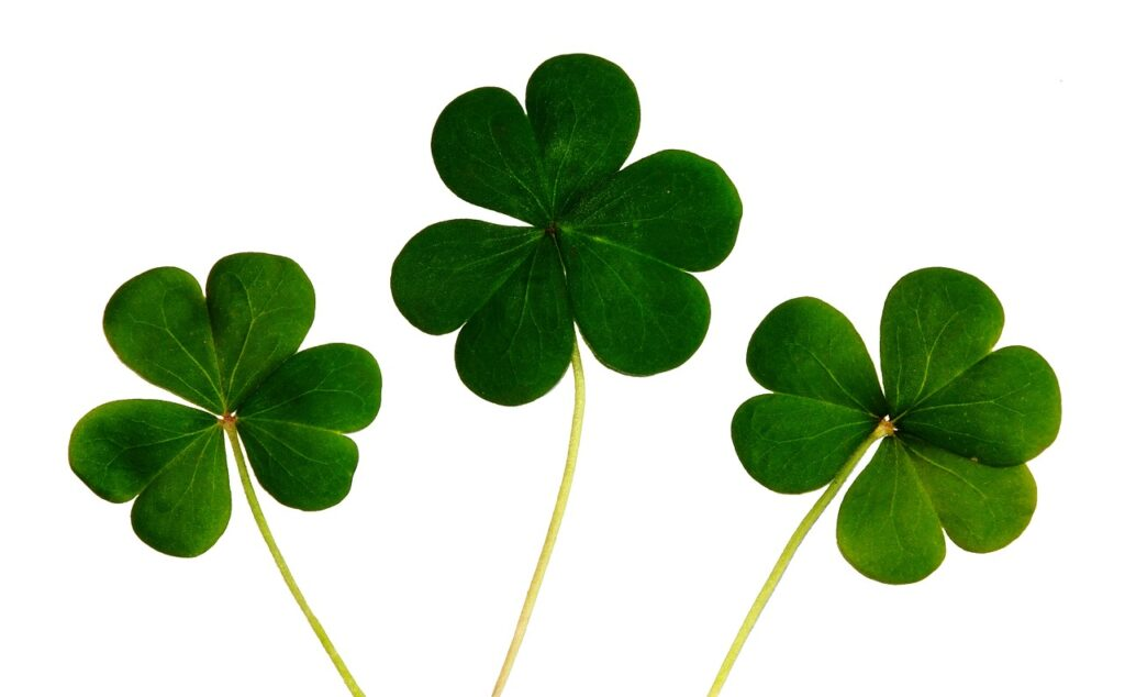 Several Top DNA Tests are On Sale for Saint Patrick's Day Here's the Breakdown
