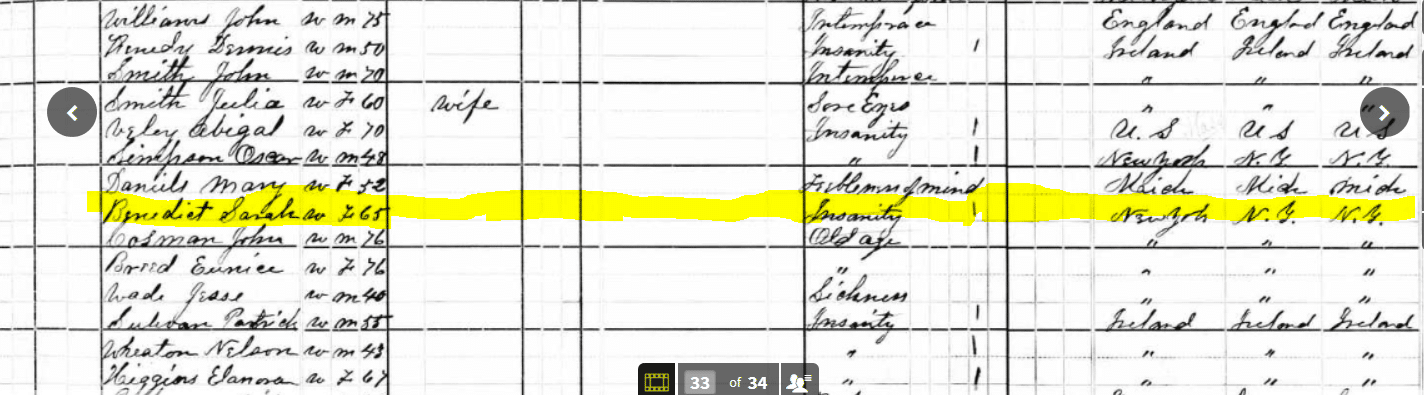 1880 Census Schedule 1 Benedict
