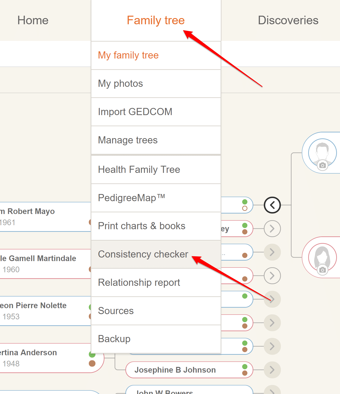 MyHeritage Consistency Checker