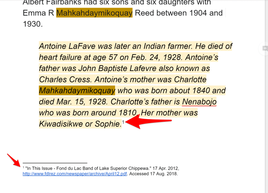 Cited Footnote from Google Docs Explore