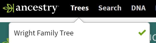 Printing an Ancestry Family Tree 1