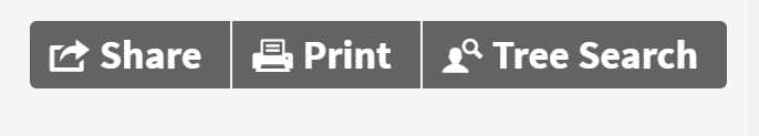 Printing an Ancestry Family Tree 3