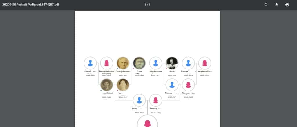 FamilySearch Print Family Tree Step 4