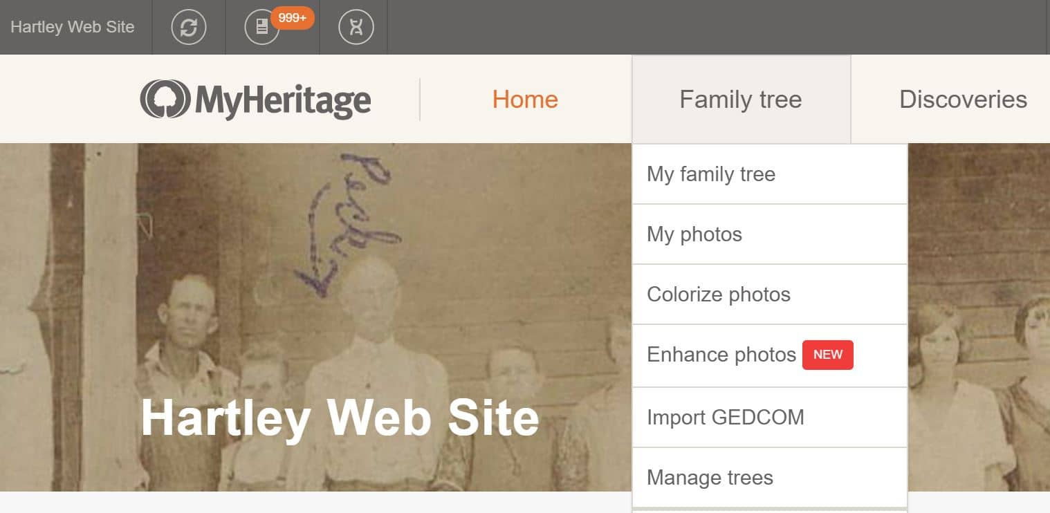 MyHeritage Family Tree Menu Dropdownn
