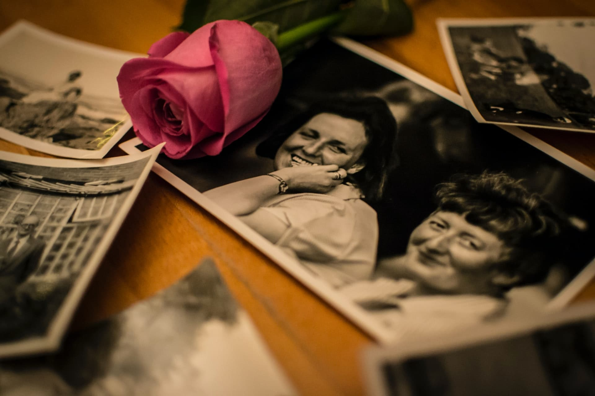 Simple ways to clear genealogy clutter fast, old family photo organization